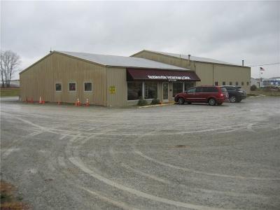 Noblesville Commercial For Sale: 3355 Conner Street