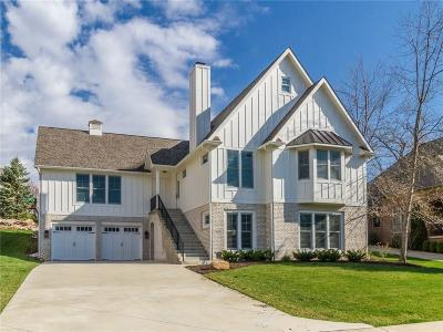 Single Family Home For Sale: 12036 Sail Place Drive