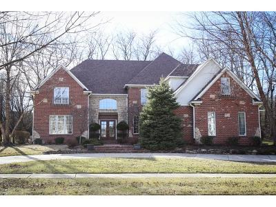 Fishers IN Single Family Home For Sale: $699,900