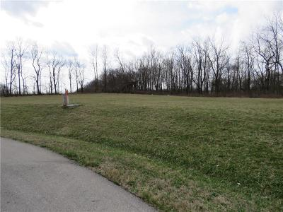 Henry County Residential Lots & Land For Sale: 027 Hyland Meadows Drive