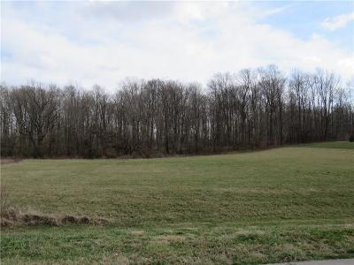 Henry County Residential Lots & Land For Sale: 031 Hyland Meadows Drive