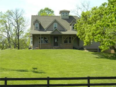 Camby Single Family Home For Sale: 12634 North Mann Road
