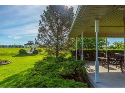 Noblesville Single Family Home For Sale: 12121 East 191st Street