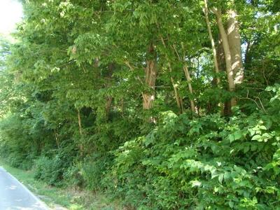 Fishers Residential Lots & Land For Sale: East 106th Street