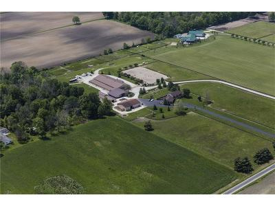 Whitestown Farm For Sale: 7829 East 100 N