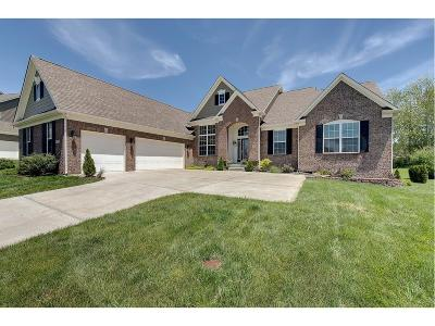 Zionsville Single Family Home For Sale: 3209 Willow Bend Trail