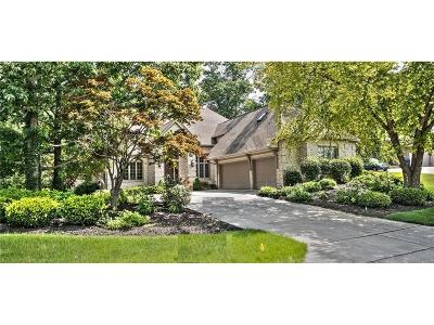 Indianapolis Single Family Home For Sale: 9325 Promontory Circle