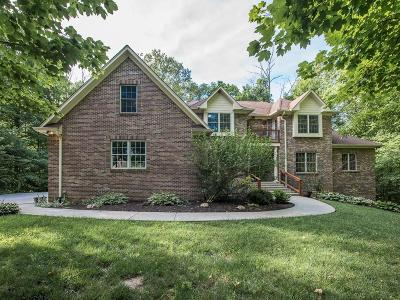 McCordsville Single Family Home For Sale: 9674 Reston Lane