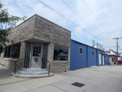 Plainfield Commercial For Sale: 119 North Vine Street