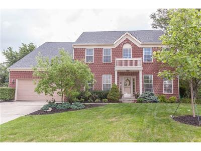 Single Family Home For Sale: 13869 Dearborn Circle