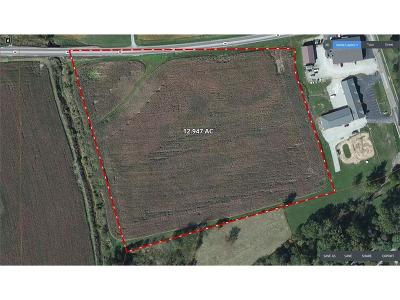 Franklin County Commercial For Sale: Sr 46