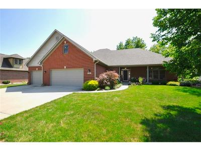 Plainfield, Plainflied Single Family Home For Sale: 5761 Hickory Hollow Drive