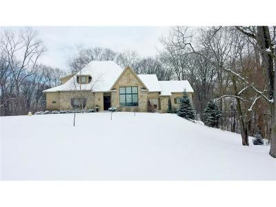 Indianapolis Single Family Home For Sale: 9153 Paddock Court