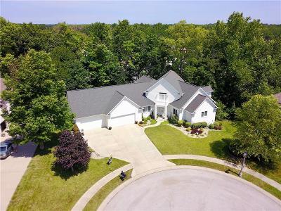 Plainfield Single Family Home For Sale: 706 Penny Lane