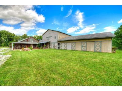 Hendricks County Farm For Sale: 5422 East County Road 600 S