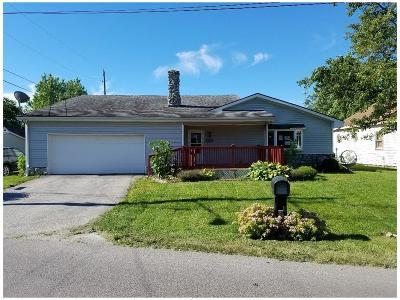 Clinton County Single Family Home For Sale: 201 Blinn Avenue