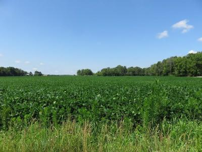 Henry County Farm For Sale: North County Road 625e