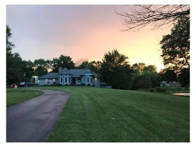 Camby Single Family Home For Sale: 7050 Mendenhall Road
