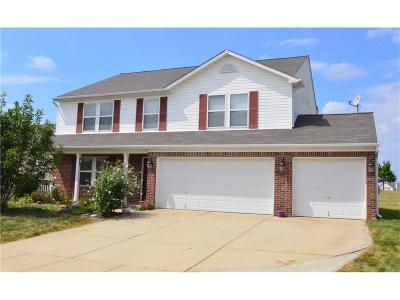 Whitestown Single Family Home For Sale: 3686 Indigo Blue Boulevard