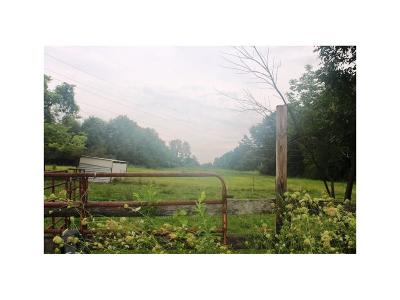 Mooresville Residential Lots & Land For Sale: 5694 East State Road 144