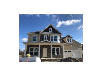 Fortville Single Family Home For Sale: 10983 Cliffside Drive