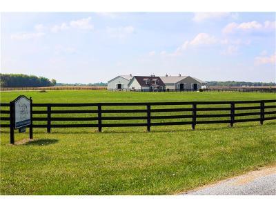 Sheridan, Fortville, Carmel, Noblesville, Atlanta Single Family Home For Sale: 9905 East 286th Street