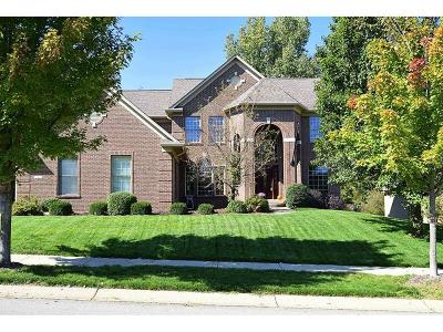 Noblesville Single Family Home For Sale: 16439 Stony Ridge Drive
