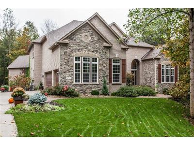 Hendricks County Single Family Home For Sale: 4746 Hampton Lane