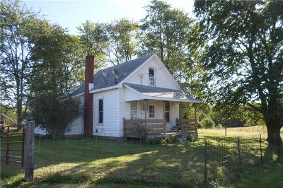 Henry County Single Family Home For Sale: 7402 East Dublin Pike