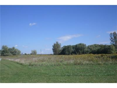 Henry County Residential Lots & Land For Sale: South County Road 250 E