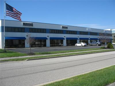 Brownsburg Commercial For Sale: 468 Southpoint Circle