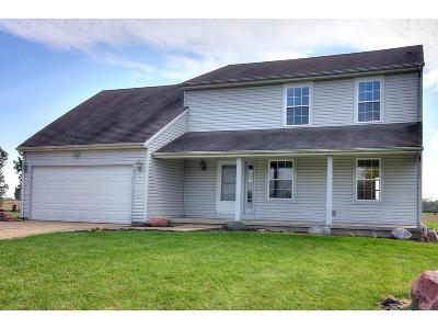 Clinton County Single Family Home For Sale: 9355 West New Castle Road