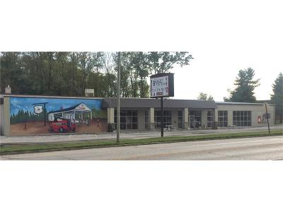 Danville Commercial For Sale: 1285 East Main Street