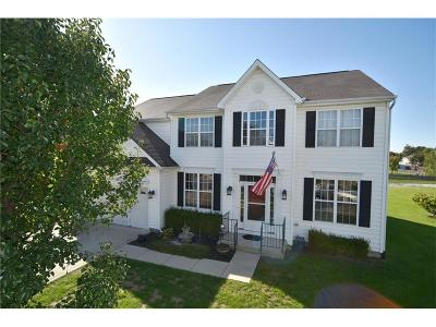 Plainfield Single Family Home For Sale: 6900 Barberry Court