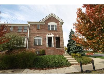 Fishers Condo/Townhouse For Sale: 13098 Overview Drive #5E