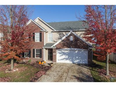Mc Cordsville Single Family Home For Sale: 8867 North White Tail Trail