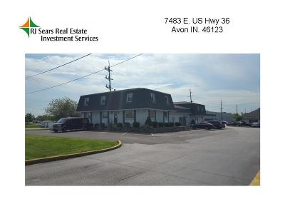 Avon Commercial For Sale: 7483 East Us Hwy 36 Highway