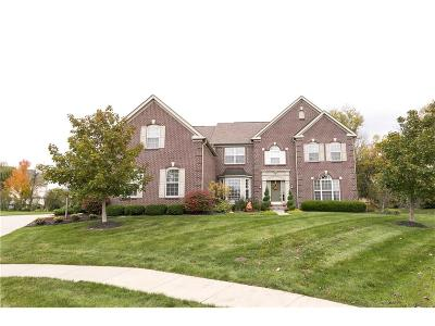 Fishers Single Family Home For Sale: 14268 Turner Hollow Place