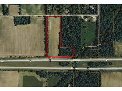 Noblesville Farm For Sale: East 141st Street