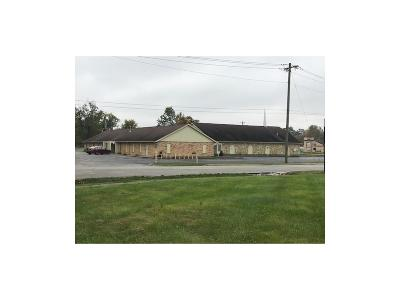 Brownsburg Commercial For Sale: 7065 East County Road 400 N