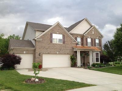 Indianapolis Single Family Home For Sale: 9312 Woodslake Drive