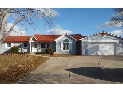 Indianapolis Single Family Home For Sale: 6447 South Franklin Road