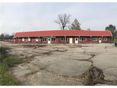 Indianapolis Commercial For Sale: 3140 Bethel Avenue