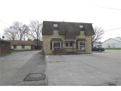 Brownsburg Commercial For Sale: 115 East Vermont Street