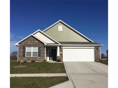 Greenwood Single Family Home For Sale: 878 Cherry Tree Lane