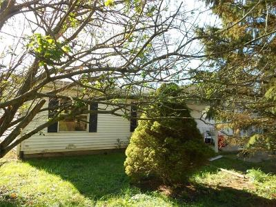 Noblesville Single Family Home Active W Contingency: 13023 Strawtown Avenue