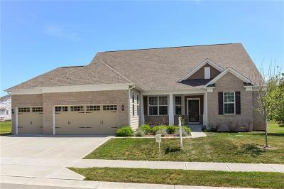 Single Family Home For Sale: 9559 Summer Hollow Drive