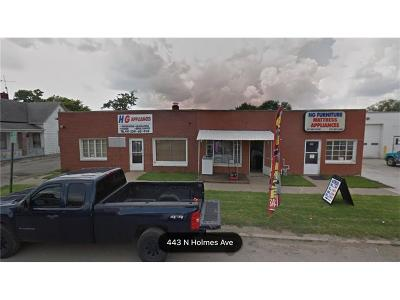 Indianapolis Commercial For Sale: 444 North Holmes Avenue