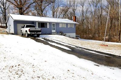 Lawrence County Single Family Home For Sale: 125 White Lane