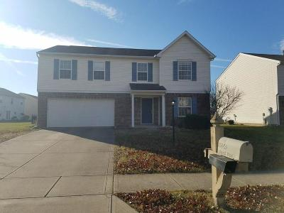 Noblesville Single Family Home For Sale: 10845 Upland Way
